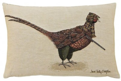 Phillip Pheasant Woven Cushion