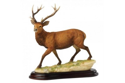 Stag - Border Fine Arts Studio Collection