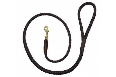 Leather Plaited Dog Lead