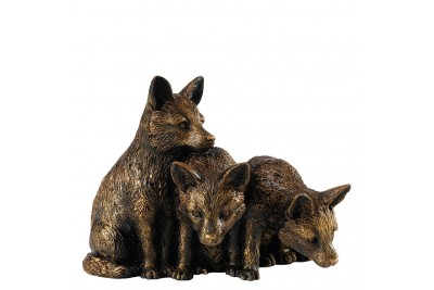 Bronzed Fox Cubs