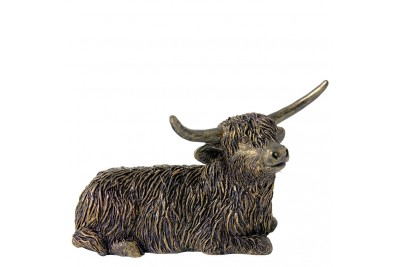 Bronzed Highland Bull Lying Down