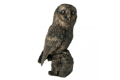 Bronzed Owl