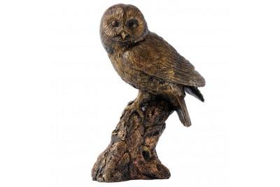 Bronzed Tawny Owl