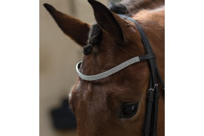 Equetech Crystal Browband