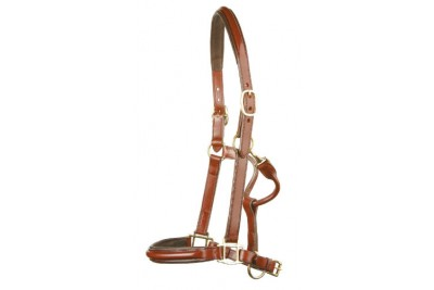 Jeffries Wembley Pro Leather Headcollar